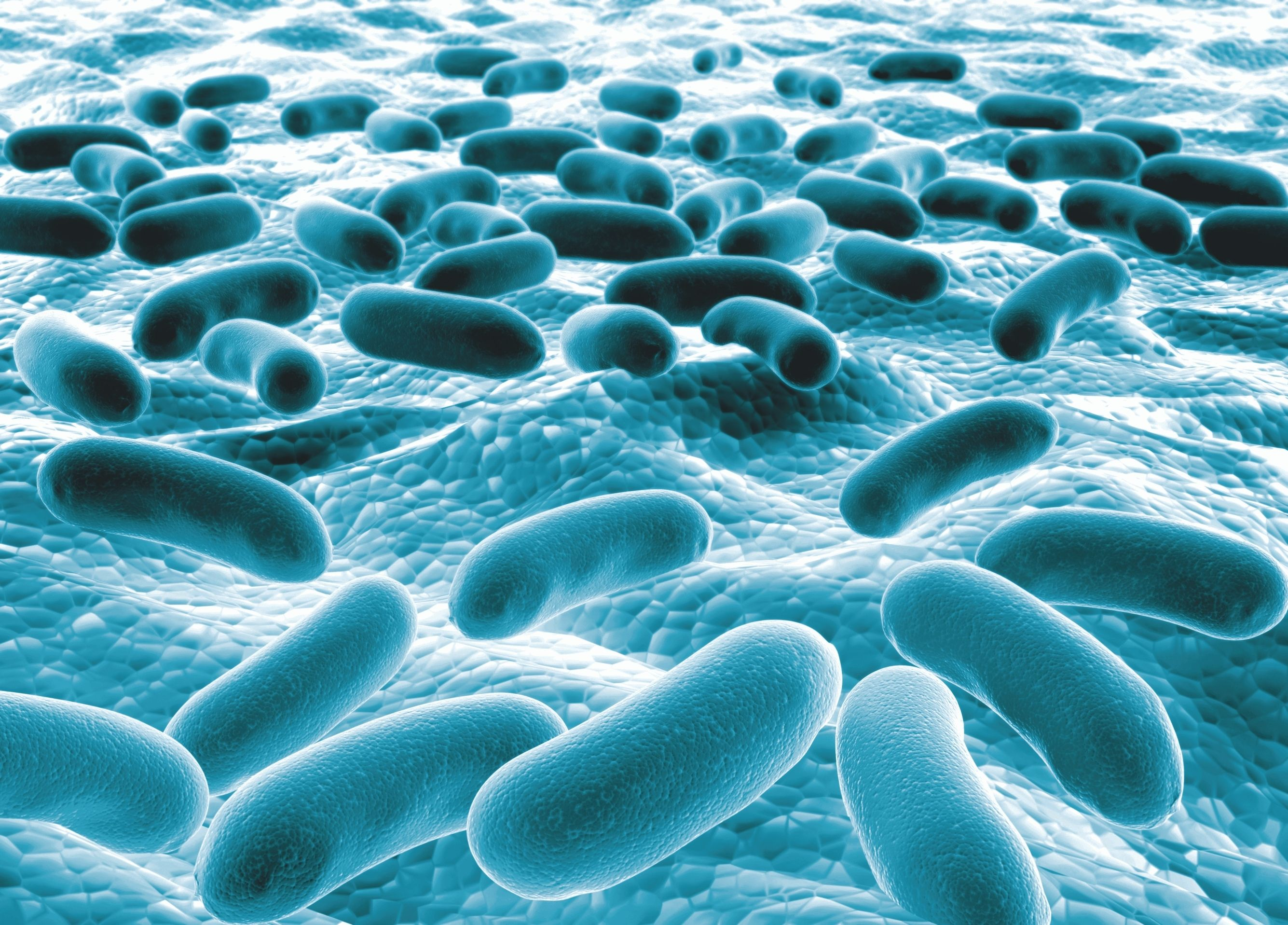 Don't Let Biofilms Take Control of Your Cooling Water System!