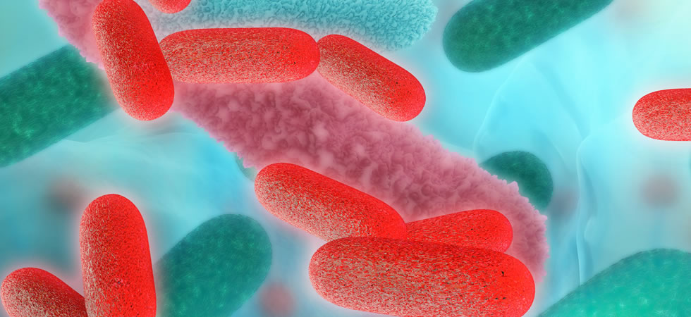new_HSE_changes_to_legionella_monitoring_INTRO