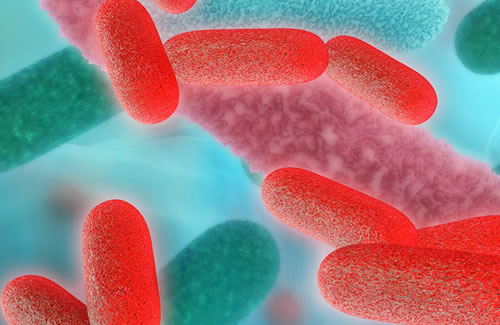 Staying on the right side of legionella law